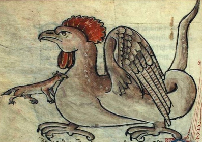 A basilisk–a lethally poisonous monster hatched from a cock's egg–illustrated in a mediaeval bestiary. Note the weasel gnawing at its breast; only they were impervious to basilisk venom.