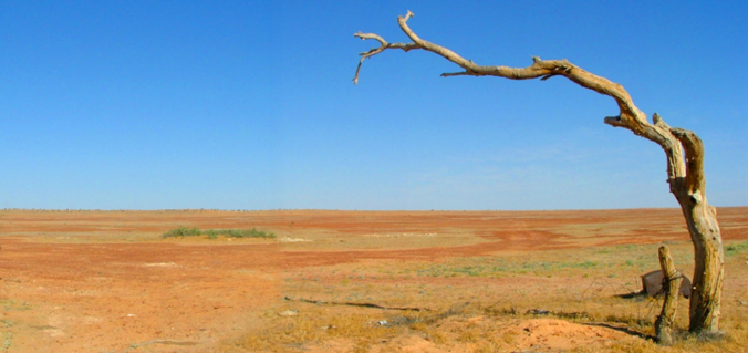 The view from the Birdsville Track.