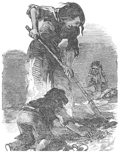 A destitute Irish family search a stubble field for healthy potatoes at the height of the Great Famine of 1845-51. At least a million people–one in eight of the population–starved to death during the disaster. Thousands more, though, were saved by the exertions of relief funds–the contributors to which included both the Ottoman sultan and Queen Victoria.