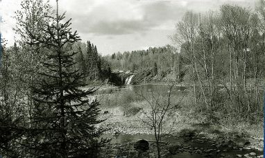 The Karelian taiga, location of several centuries of slave raid that distributed highly-value Finnish children throughout much of Asia.