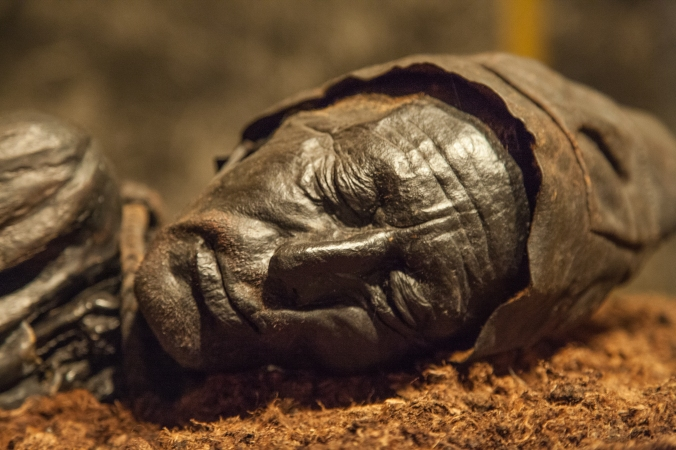 The remarkably-preserved face of Tollund Man, who was hanged in a Danish bog around 350 B.C. and found naked but for a leather belt and cap. He was apparently a human sacrifice whose remains were treated with care and respect after his death.