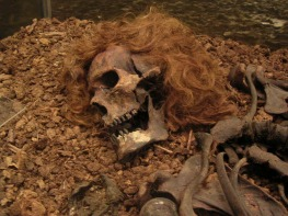 Bocksten Man is one of the latest of the bog bodies. His remains, found in Sweden, date to the 14th century A.D. He had been beaten to death; his hair was dyed red by the waters of the bog.