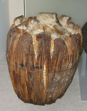 A smashed keg of bog butter, found in an Irish bog and dating to around 310 A.D. Hundreds of bog butter finds have been made; archaeologists differ as to whether Iron Age peoples used bogs as primitive refrigerators or whether the butter was intended as offerings.
