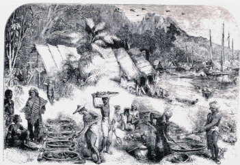 The Makassan trepang trade at Port Essington. This sketch dates to the middle of the 19th century, but the smokehouses used to dry trepang were a feature of the trade from its earliest days.